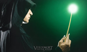 Voldemort: Origins of the Heir